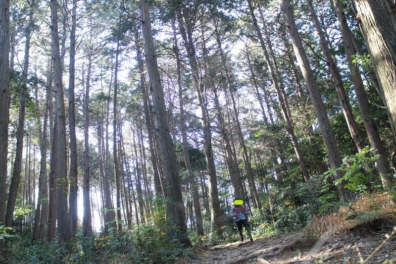京都トレイルランニング東山